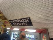 The Metro Station at Montparnasse
