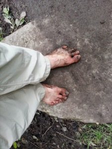 Barefoot walking on the Camino. Spain, May, 2015.