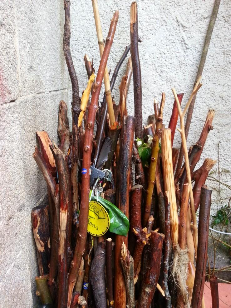 sticks.jpg